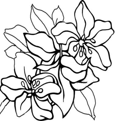 Blommor m larbilder m larbok m larbilder princessor for Mexican coloring pages for adults